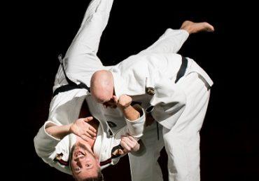 Judo-Mark Ferry-dc